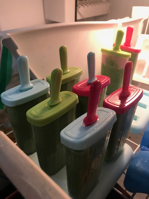 Yyyeaaahhh...look at those popsicles just chilling with the ice...and frozen waffles...and probably ice cream...yeah...get your health on.